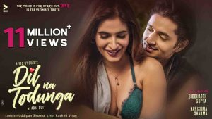 Read more about the article Dil Na Todunga Lyrics in Hindi/English