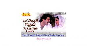 Read more about the article Teri Ungli Pakad Ke Chala Lyrics   Laadla   Udit Narayan   Jyotsna Hardikar